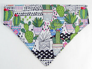 Cactus Dog Bandana Over the Collar dog bandana Dog collar bandana puppy - Furrypetbeds