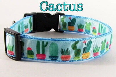 Cactus dog collar handmade adjustable buckle collar 1
