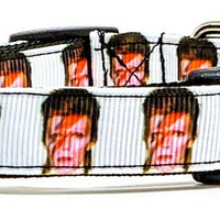 "David Bowie dog collar handmade adjustable buckle collar 5/8"" wide or leash - Furrypetbeds"