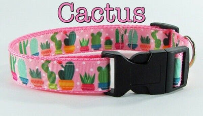 Cactus girl dog collar handmade adjustable buckle collar 1