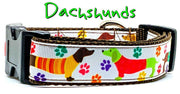 "Dachshunds dog collar handmade adjustable buckle collar 1"" or 5/8""wide or leash - Furrypetbeds"