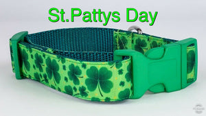 "St. Pattys Day 4 leaf clover dog collar handmade adjustable buckle collar 1""wide - Furrypetbeds"