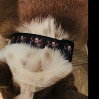 "Doctor Who dog collar handmade adjustable buckle collar 1"" wide or leash $12 - Furrypetbeds"