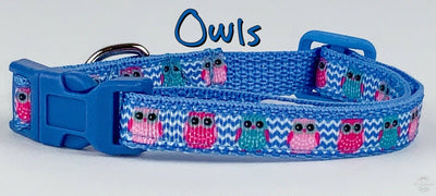 Owls cat or small dog collar 1/2