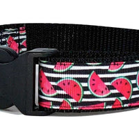 "Watermelon dog collar handmade adjustable buckle collar 1"" wide or leash $12 - Furrypetbeds"