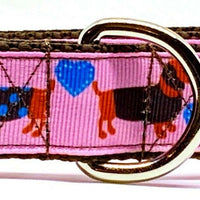 "Dachshund dog collar handmade adjustable buckle collar 1""wide leash girly pink - Furrypetbeds"