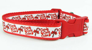 "Candy Cane dog collar handmade adjustable buckle collar 1""wide or leash Xmas - Furrypetbeds"