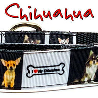 "Chihuahua dog collar handmade adjustable buckle collar 1"" or 5/8"" wide or leash"