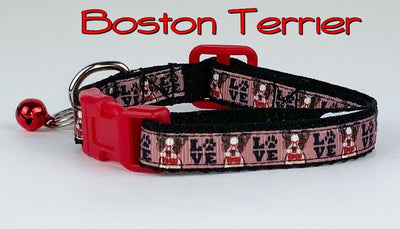 Boston Terrier cat or small dog collar 1/2