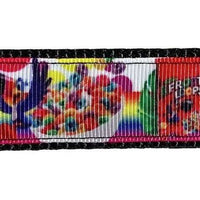 "Fruit Loops dog collar handmade adjustable buckle collar 1"" wide or leash - Furrypetbeds"
