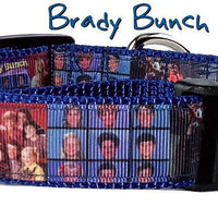 "Brady Bunch dog collar handmade adjustable buckle collar 1"" wide or leash $12 - Furrypetbeds"