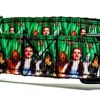 "Wizard Of Oz dog collar handmade adjustable buckle collar 5/8""wide or leash - Furrypetbeds"