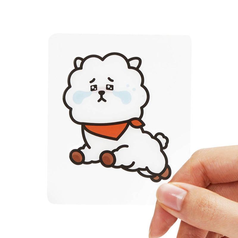 BT21 RJ Epoxy Decal Sticker (13)