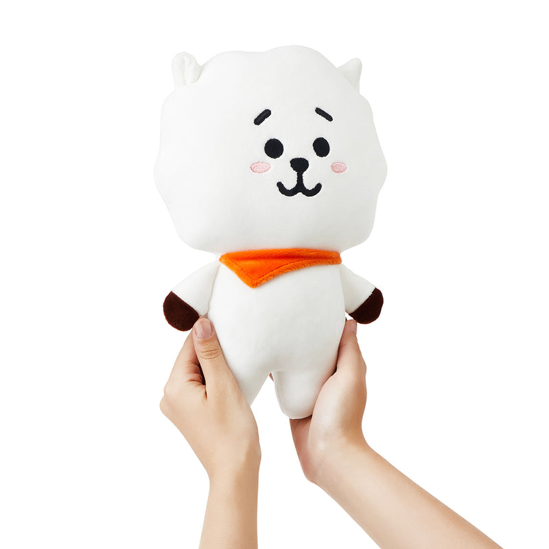 BT21 RJ Mini Flat Body Cushion