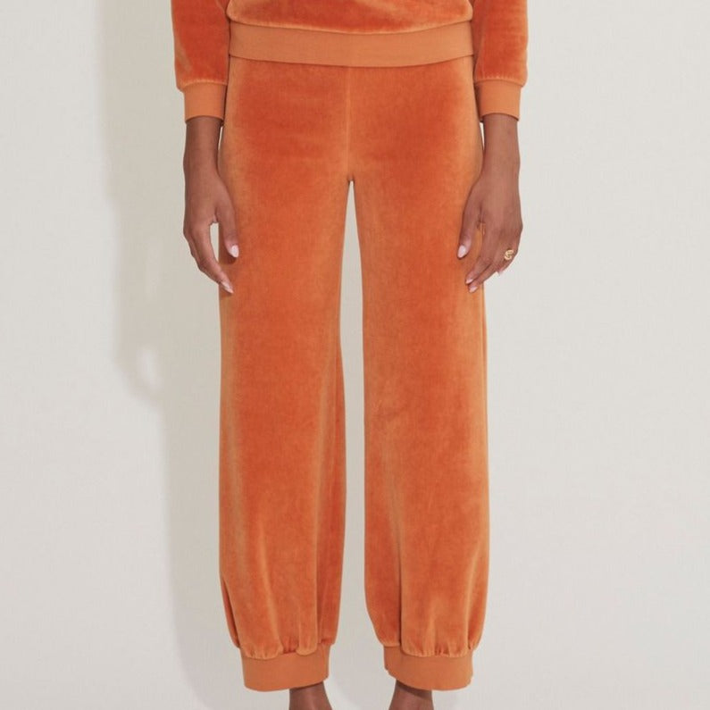 High Waist Harem Pant Velour