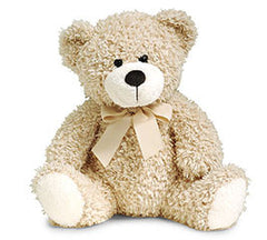 12 Inch Plush Brown Bear
