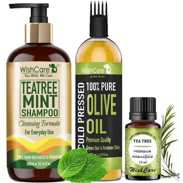TeaTree Mint Combo - Anti-Dandruff & Dryness Kit - WishCare