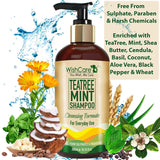 TeaTree Mint Shampoo - Cleansing Formula - 300ml - WishCare