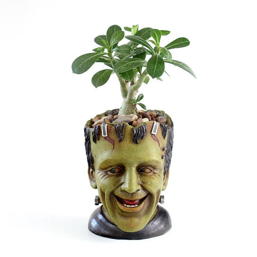 Frankie Flowerpot Head - Wildly Untamed