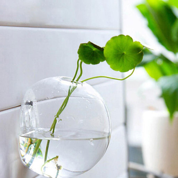 Glass Bowl Wall Planter