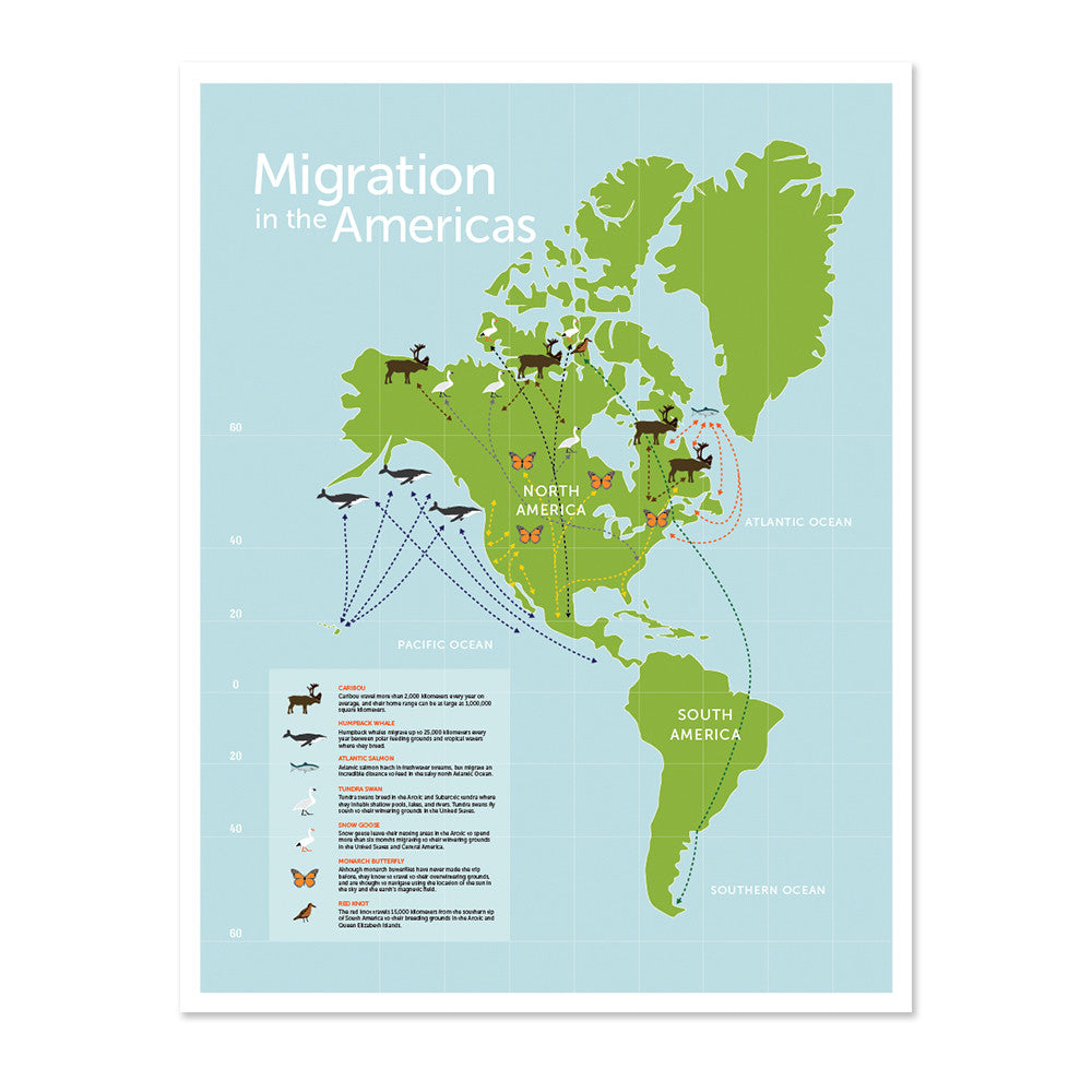 Migration in the Americas Print