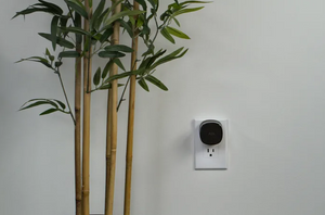 The Bee for ADP Partners – Mesh Wi-Fi node, adds up to 500 sq. ft.