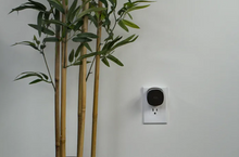 Load image into Gallery viewer, The Bee for Miller Thomson Partners – Mesh Wi-Fi node, adds up to 500 sq. ft.