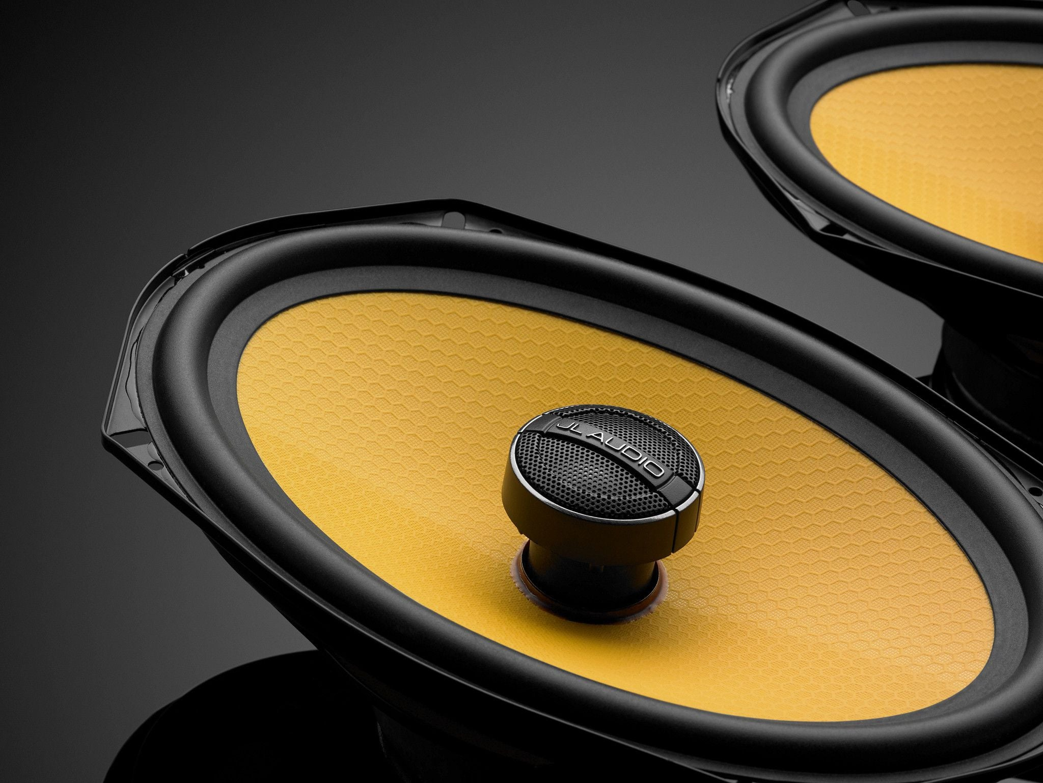 Detail of C1-690x Coaxial Speakers