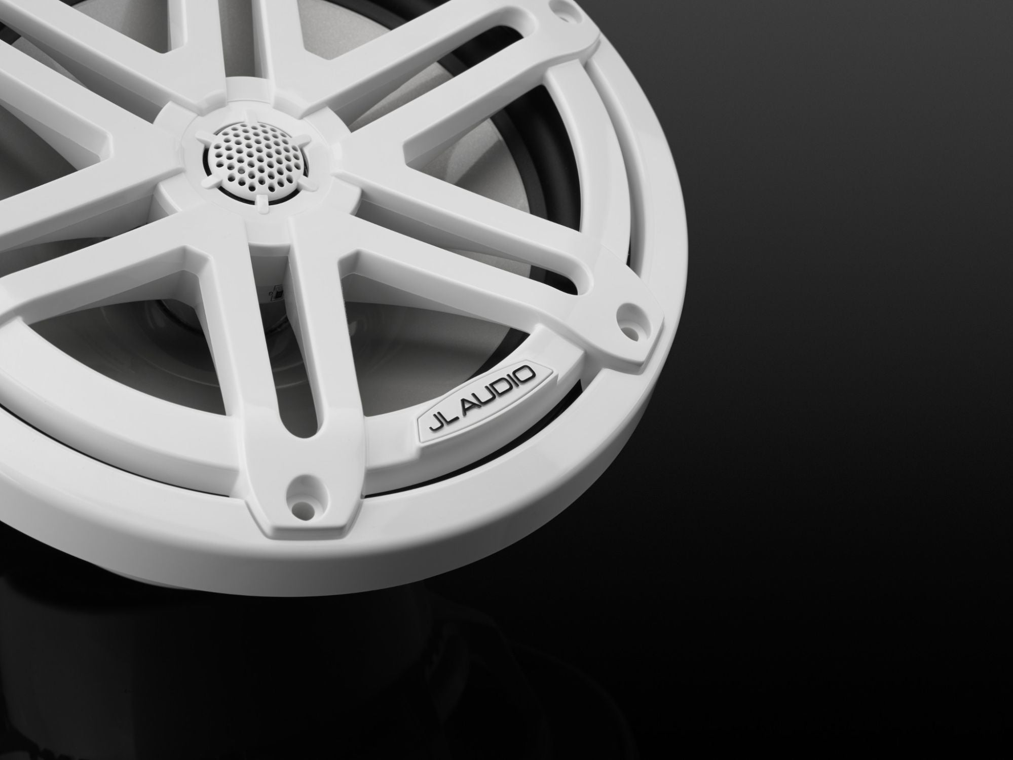 Detail of M3-770X-S-Gw Coaxial Speaker