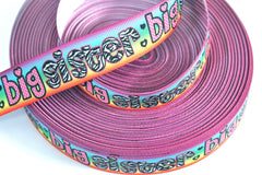 1 yard 7/8 inch     Big SISTER on Rainbow Background  (matching Big Sister available)   -  Printed Grosgrain Ribbon