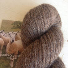 Load image into Gallery viewer, 100% Bluefaced Leicester - Aran
