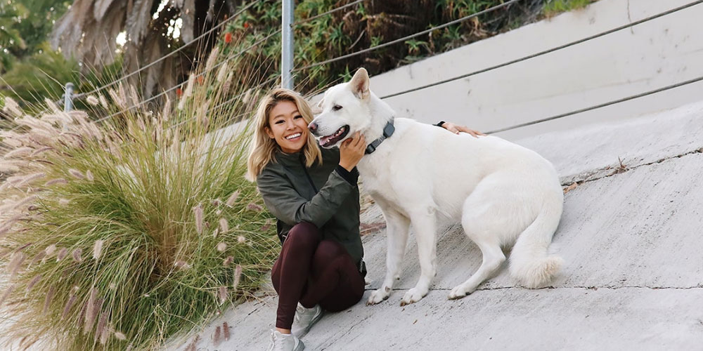 Getting fit with your dog: @RRAYYME gives us her favorite tips | Whistle