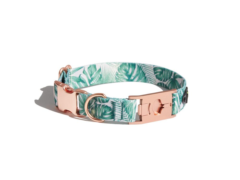Palm Prints Dog Collar