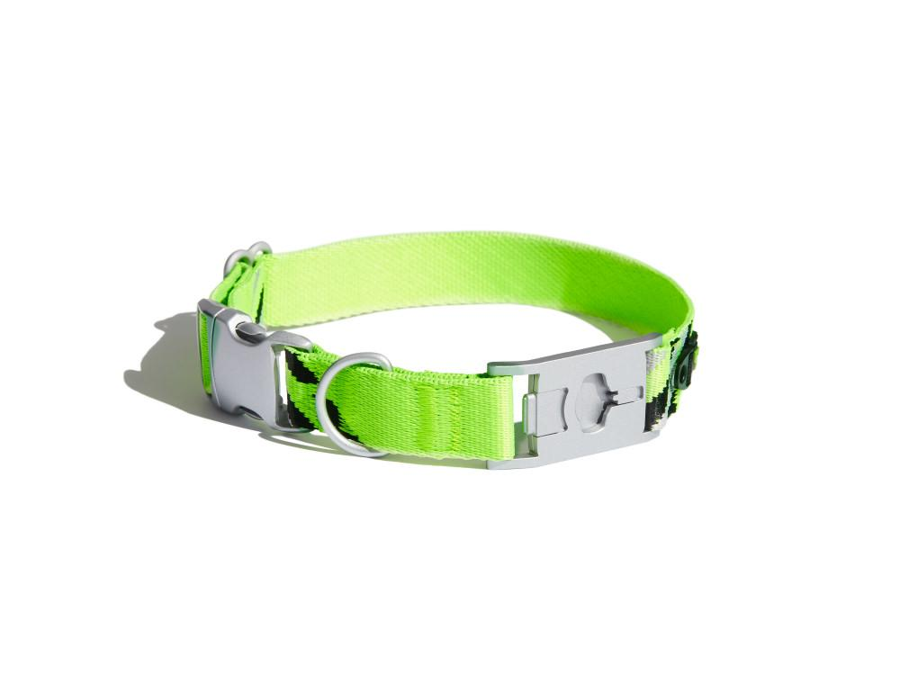 See-Me Neon (Reflective) Dog Collar