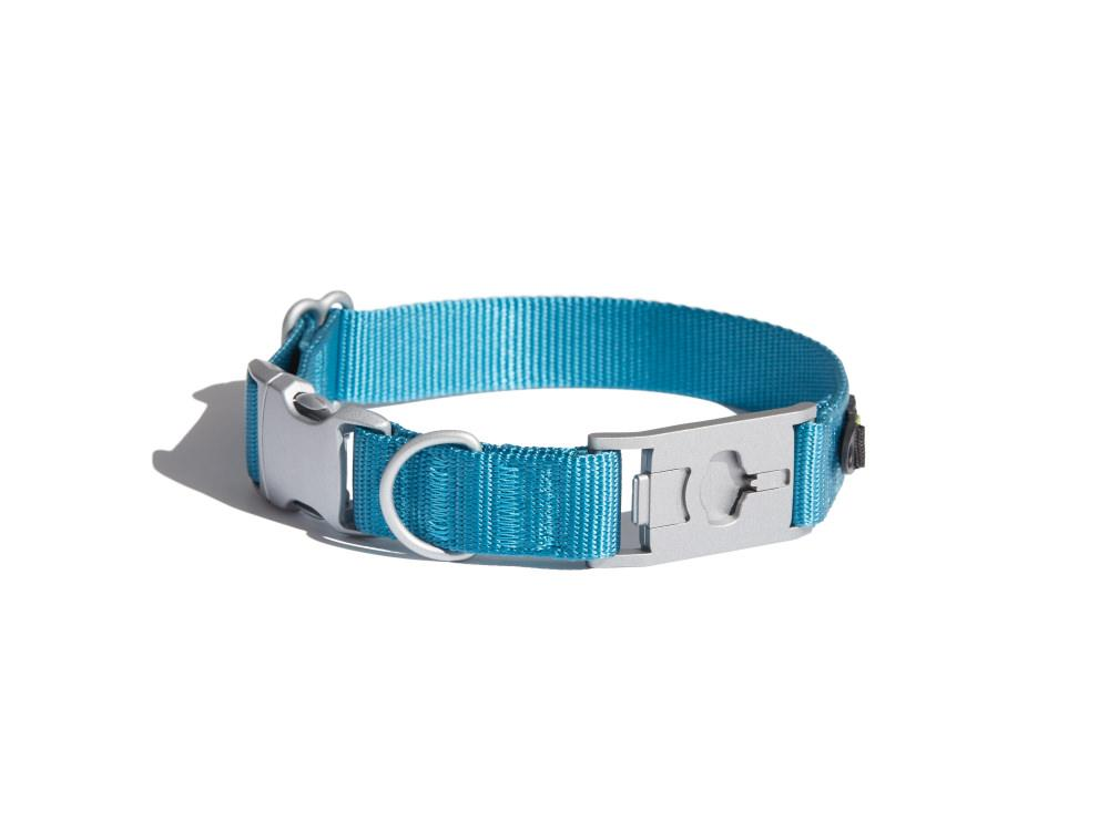 Bolt Blue Dog Collar