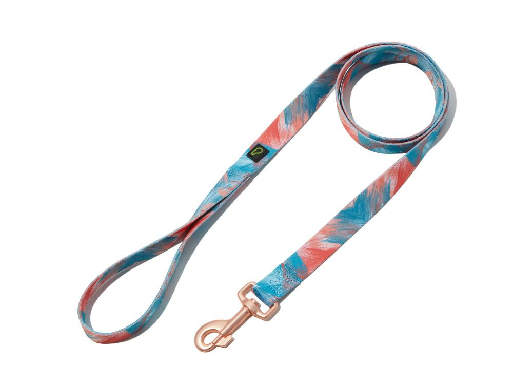 Brush of Blush Dog Leash