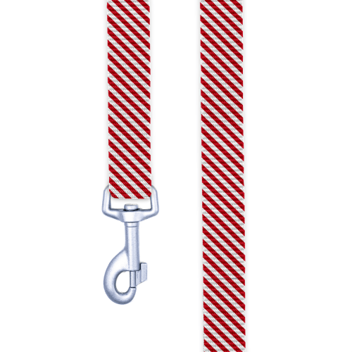 Peppermint Stripes Dog Leash