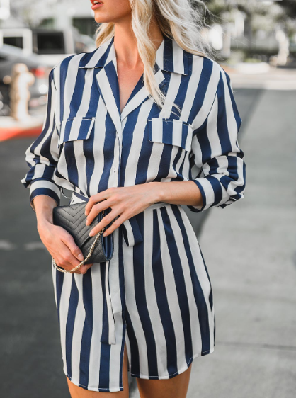 Sailor James Stripe Button Down Shirt Dress
