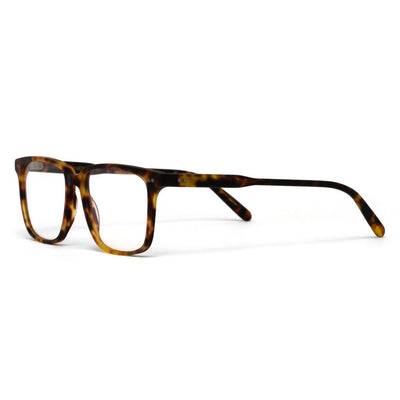 Clark Honey Tortoise Shell