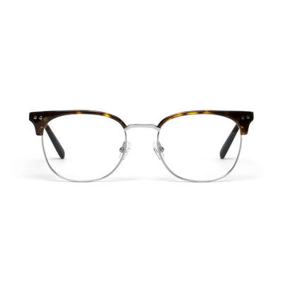 Willow Tortoise Shell