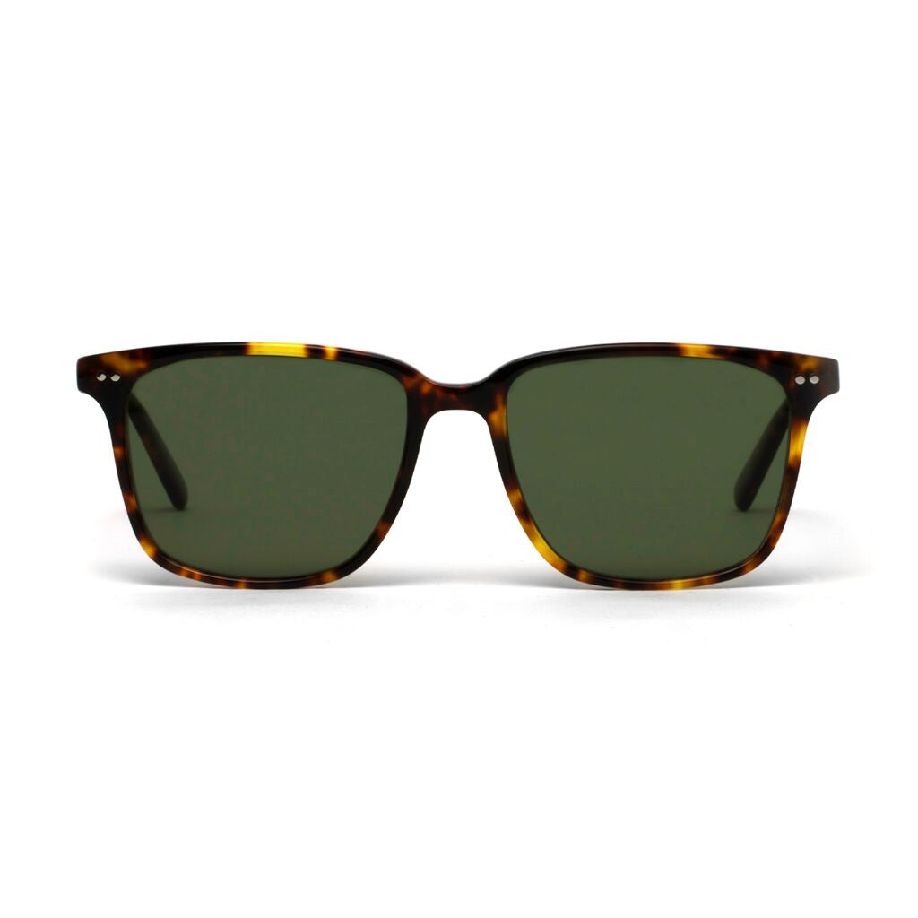 Clark Honey Tortoiseshell Green Lens