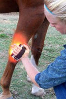 Infrared Red Light Human Animal Pain Relief