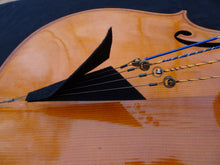 Load image into Gallery viewer, Custom Cello 4/4 size 4 or 5 string
