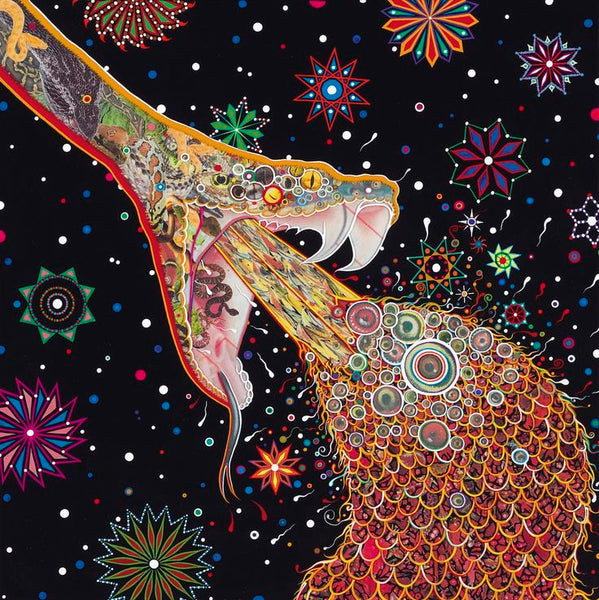 Fred Tomaselli artwork