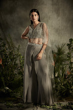Load image into Gallery viewer, Draped Pant Saree