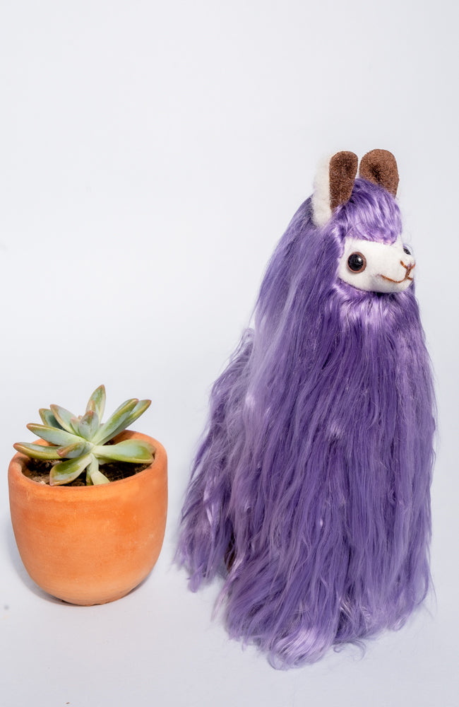 Susy the Suri Alpaca - Colors