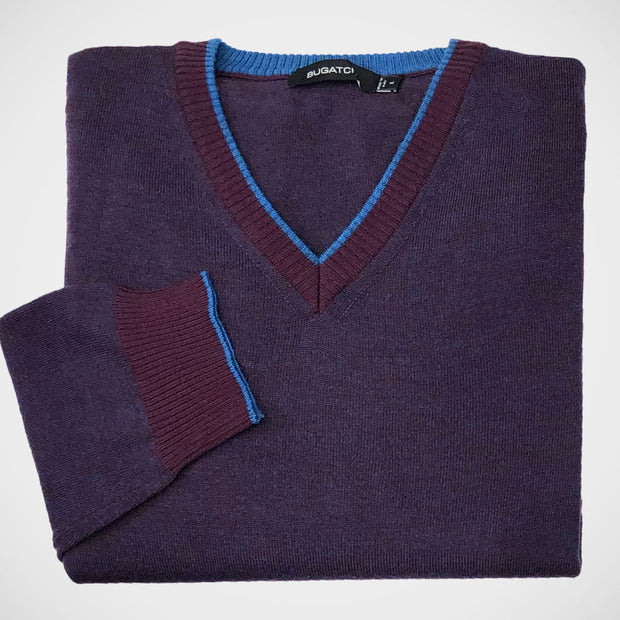 'V-neck Neck- Plum' Sweater