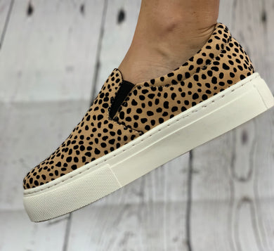 Catch Me if you Can Leopard Sneaker