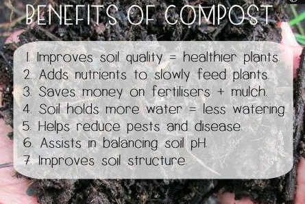 #8 - Benefits of Compost in Soil Quality
