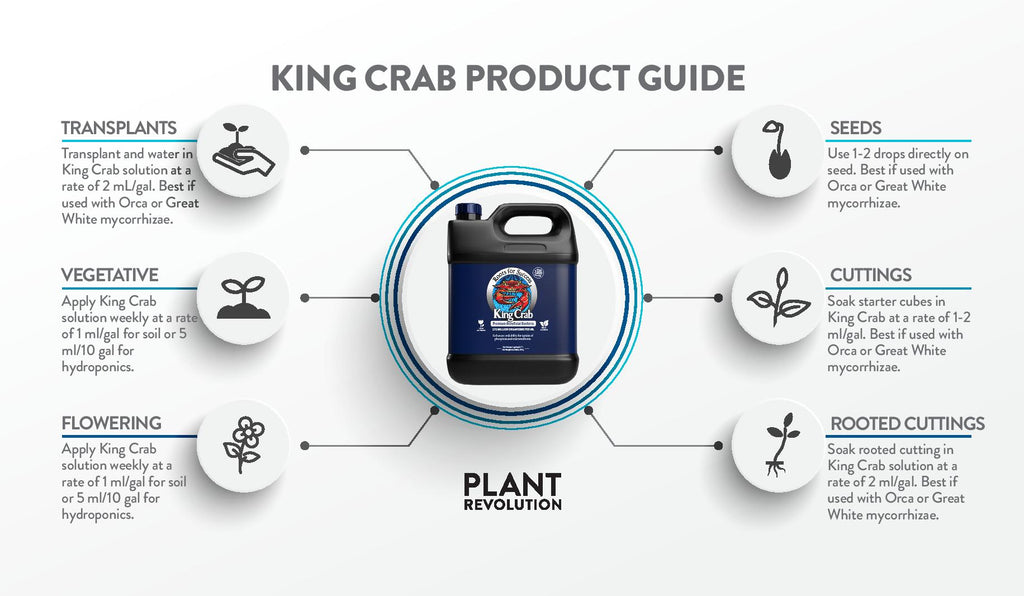 king crab product guide